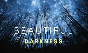 trees at night with text beautiful darkness