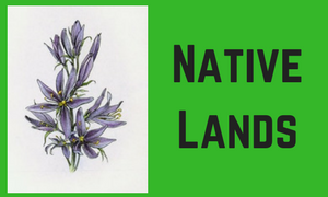 """Plant with text, """"Native Lands"""""""